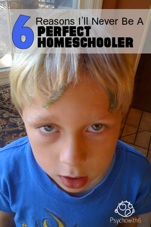6 Reasons I'll Never Be a Perfect Homeschooler