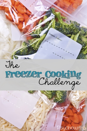 The best way to start freezer cooking. Get organized, get some meals in the freezer, and you can relax this fall!