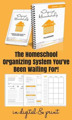 Homeschool Organizing System with samples