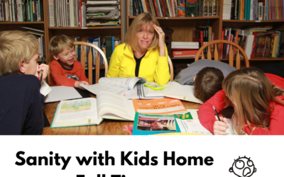 Sanity with Kids Home Full Time