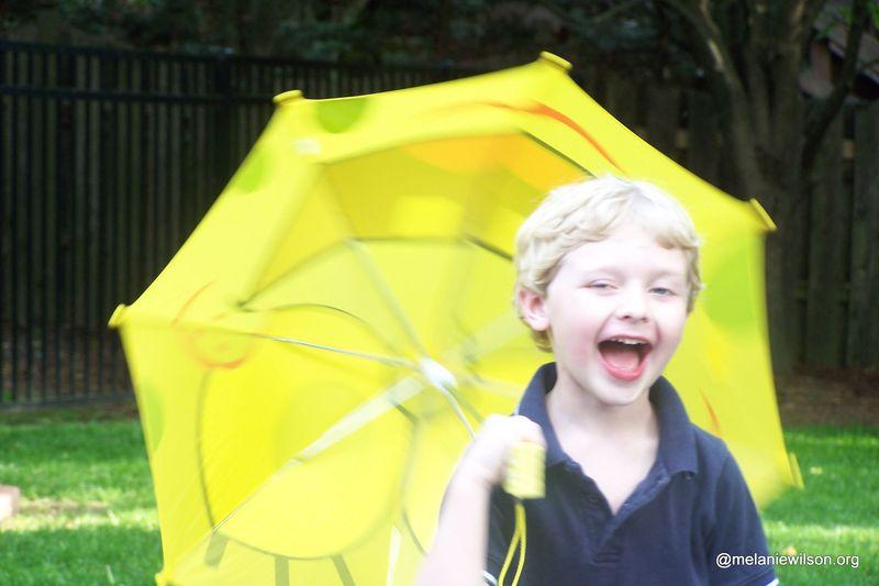 Sam umbrella